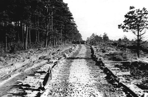 Road built by Co. C
