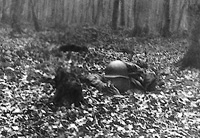 Soldier in foxhole taking aim on something
