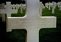 Gravestone of Wayne L. Long