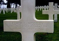 Gravestone of Elmer L. Moseley