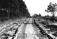 Road built by Co C